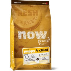 NOW FRESH - CHIOT - SANS CEREALES  (Sac de 2,72 kg)